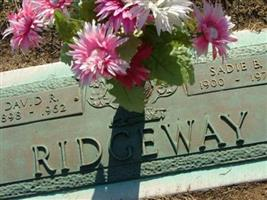 David R Ridgeway