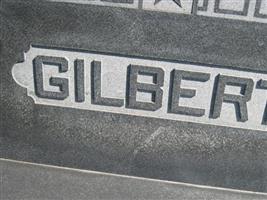 Stephen M Gilbert