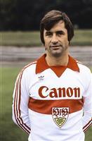Dragan Holcer