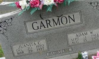 Adam W Garmon