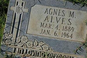 Agnes M. Alves