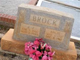 Angie Brock