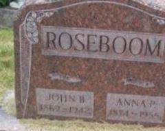 Anna P Roseboom
