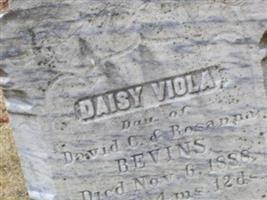 Daisy Viola Bevins