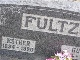 Guy Ernest Fultz