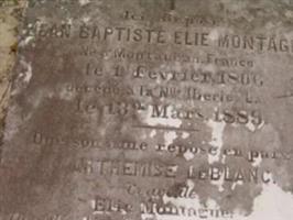 Jean Baptiste Elie Montagne