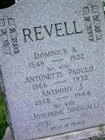 Josephine Sinisgalli Revell