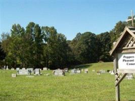 Peppers Lake Cemetery, Hwy 302