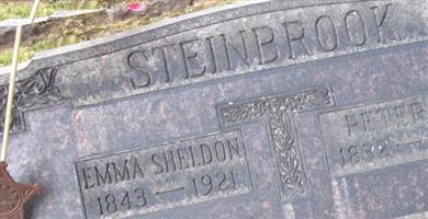 Peter N. Steinbrook