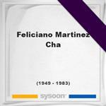 Feliciano Martinez-Cha, Headstone of Feliciano Martinez-Cha (1949 - 1983), memorial