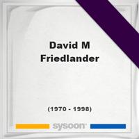 David M Friedlander, Headstone of David M Friedlander (1970 - 1998), memorial