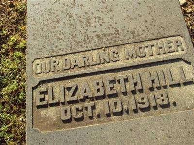"""Elizabeth """"Lizzie"""" Hill on Sysoon"""
