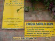 Aqua Sacra Spring