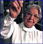 Stephanie Louise Kwolek