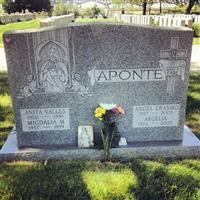 Angel E Aponte