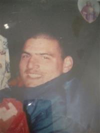 Michael J Pittari